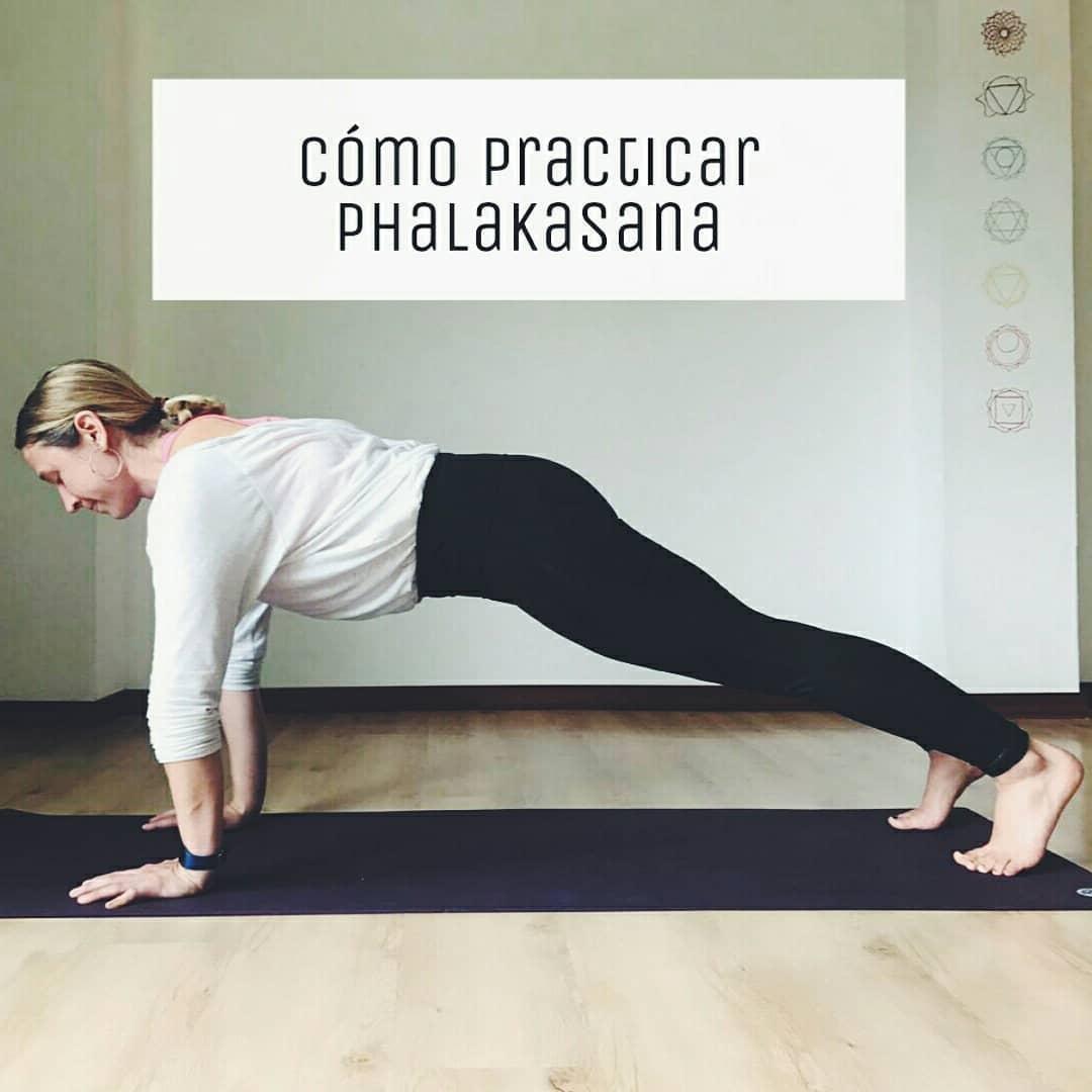 Cómo practicar: Phalakasana